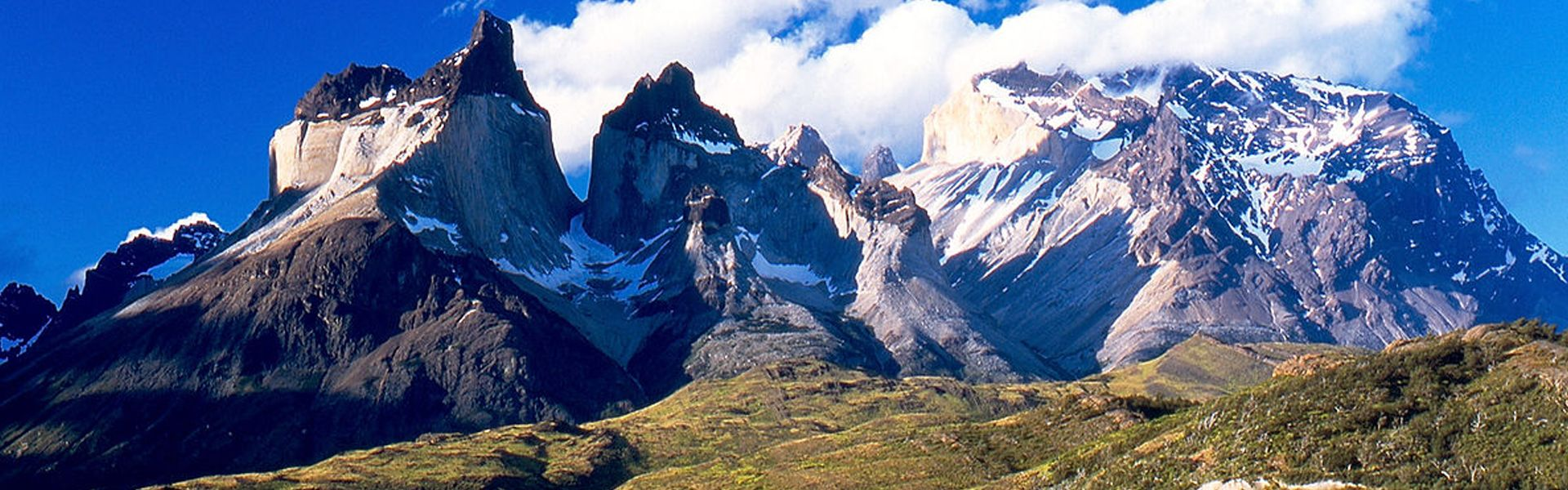 chile austral